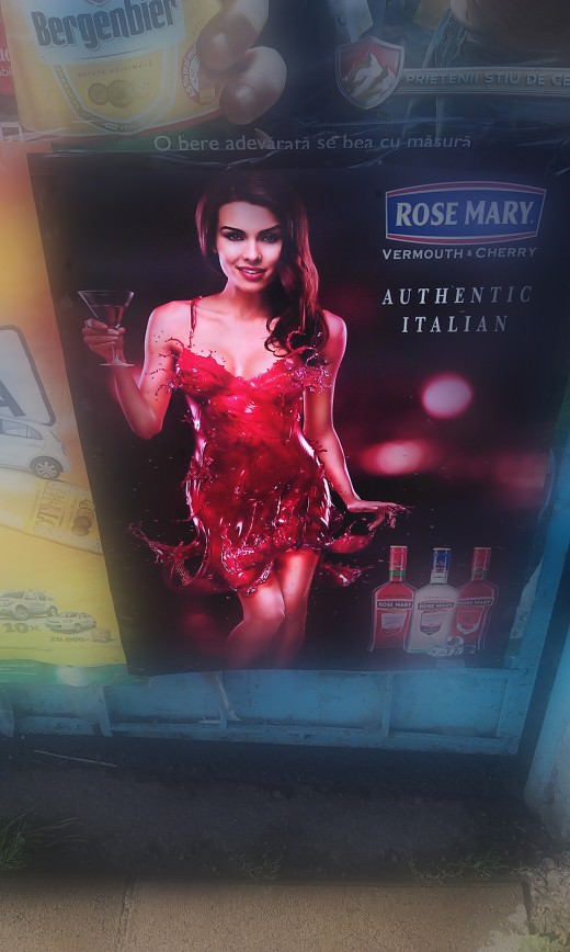 Rose Mary chick 3