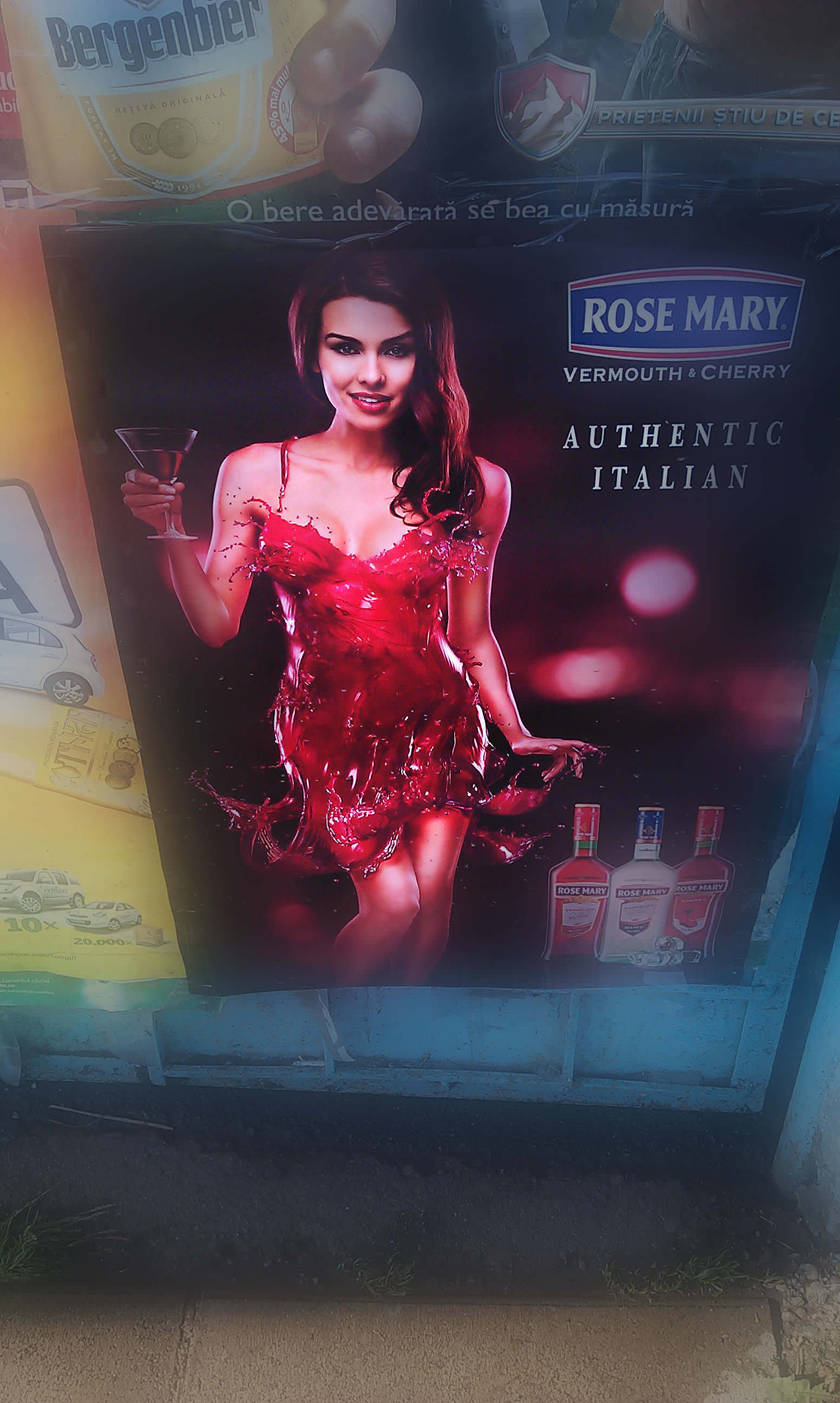 Rose-Mary-chick-3