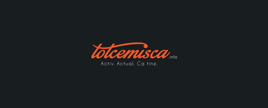 totcemisca.info